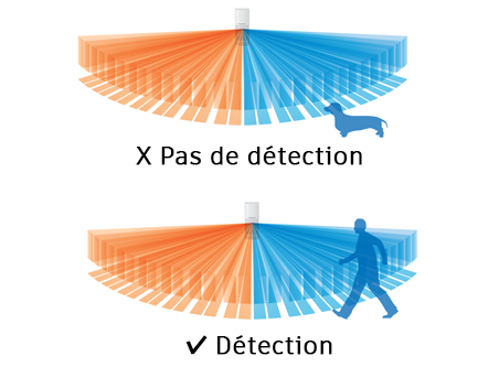 WXI-RAM Optex