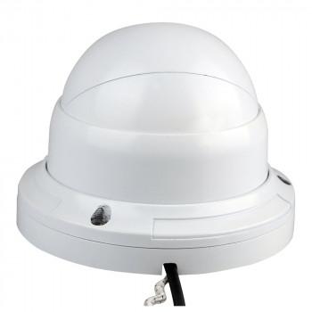 Caméra dôme extérieure HD 720p infrarouge 20m PoE Foscam FI9853EP